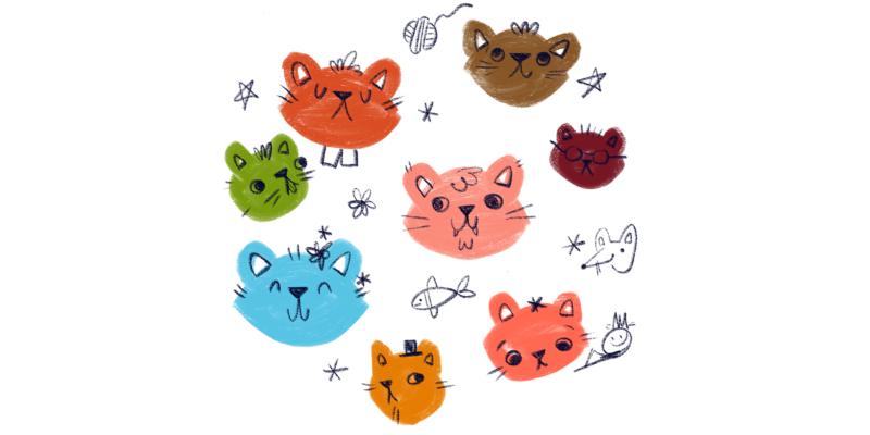 CatBears